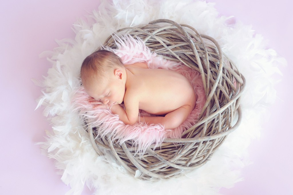 A baby sits inside a fluffy carpet and inside a nest. Here's just a little update.