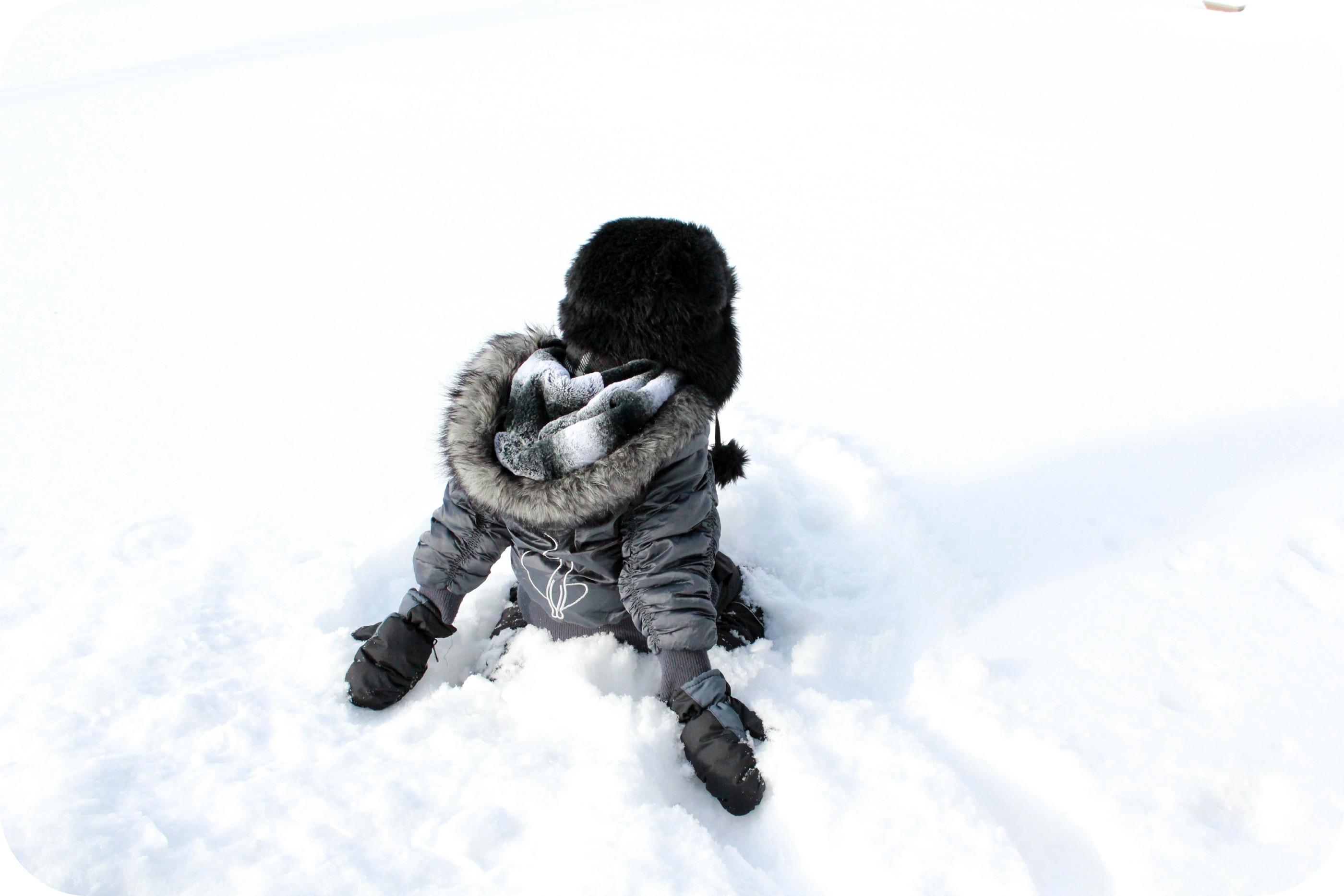 Snow Day- Wordful Wednesday