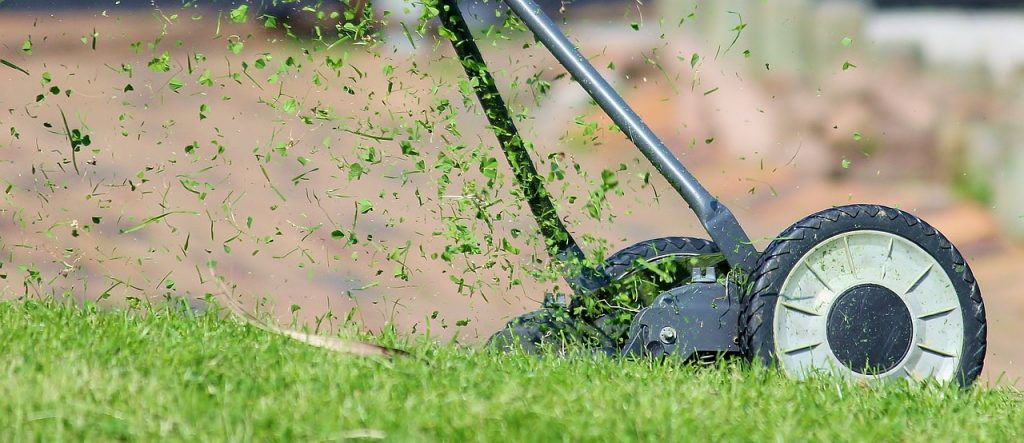 10 Tips to Go Green This Summer.