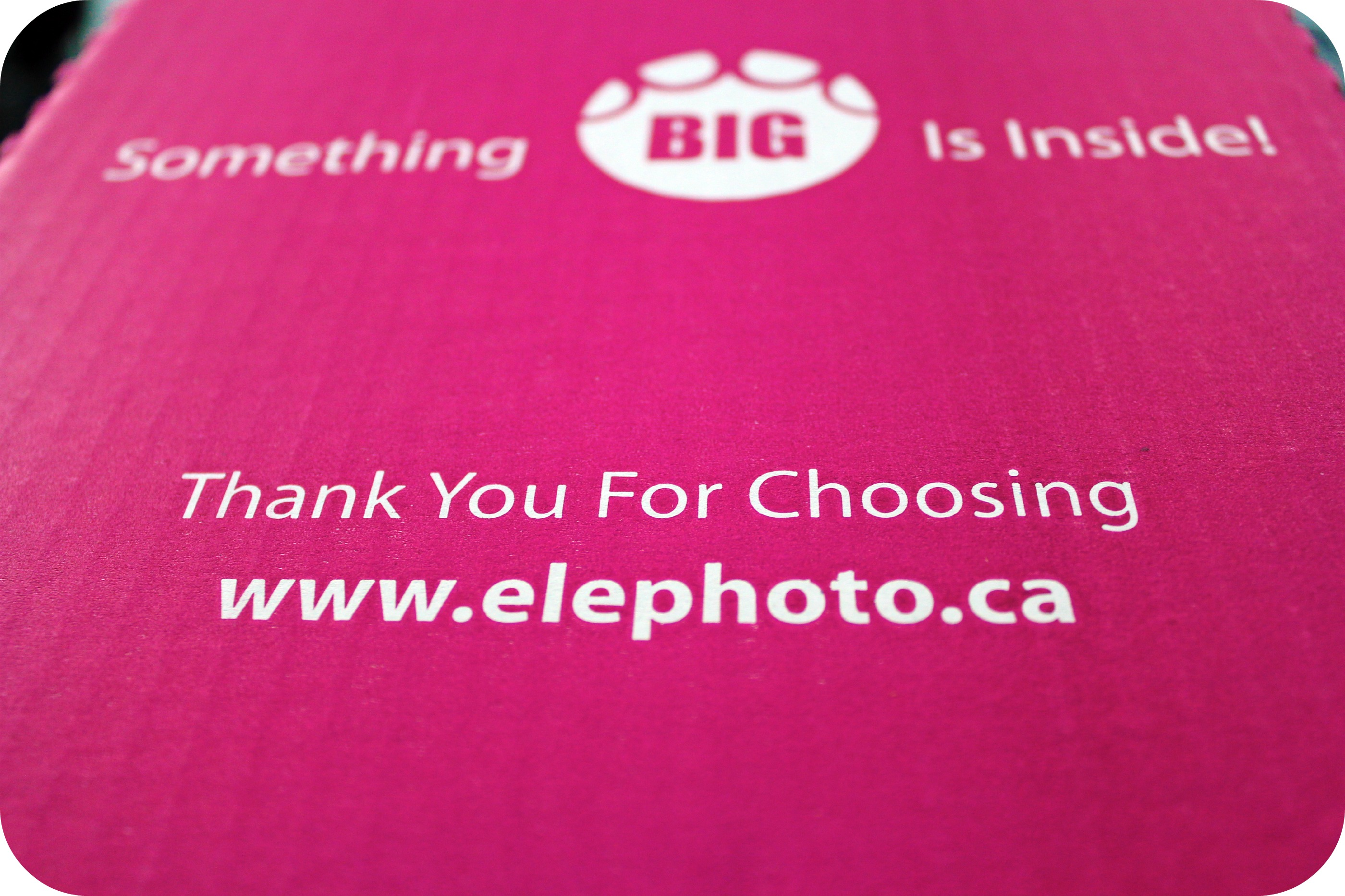 Never Forget: An Elephoto Review & Giveaway