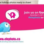 It's Party Time: Come and Party With Elephoto!