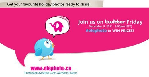 Cute Twitter bird looking up at Elly the Elephoto elephant.