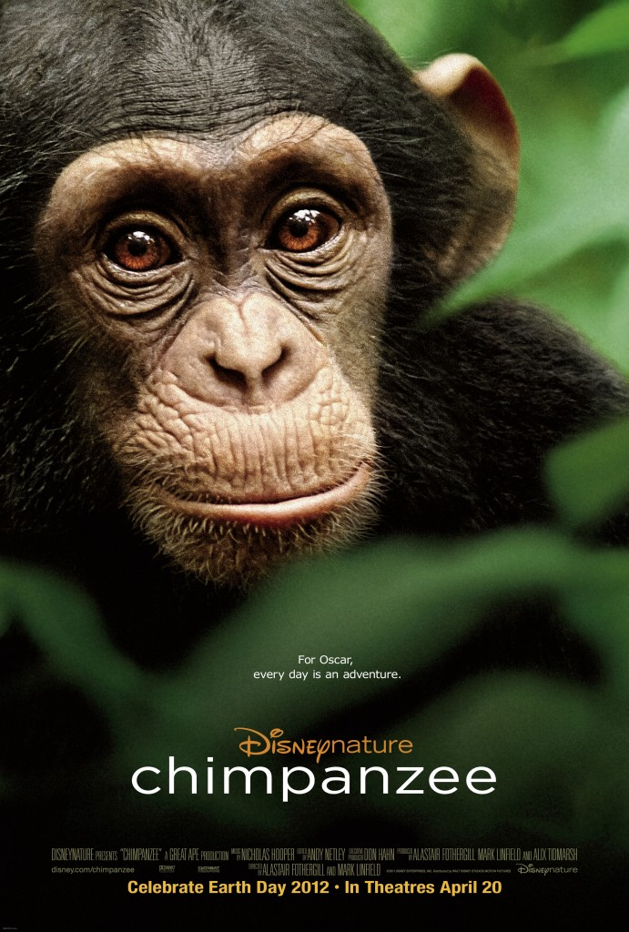 The movie cover of Disneynature Chimpanzee.