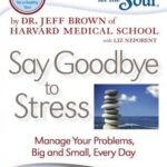 Chicken Soup for the Soul Chronicles: Say Goodbye to Stress