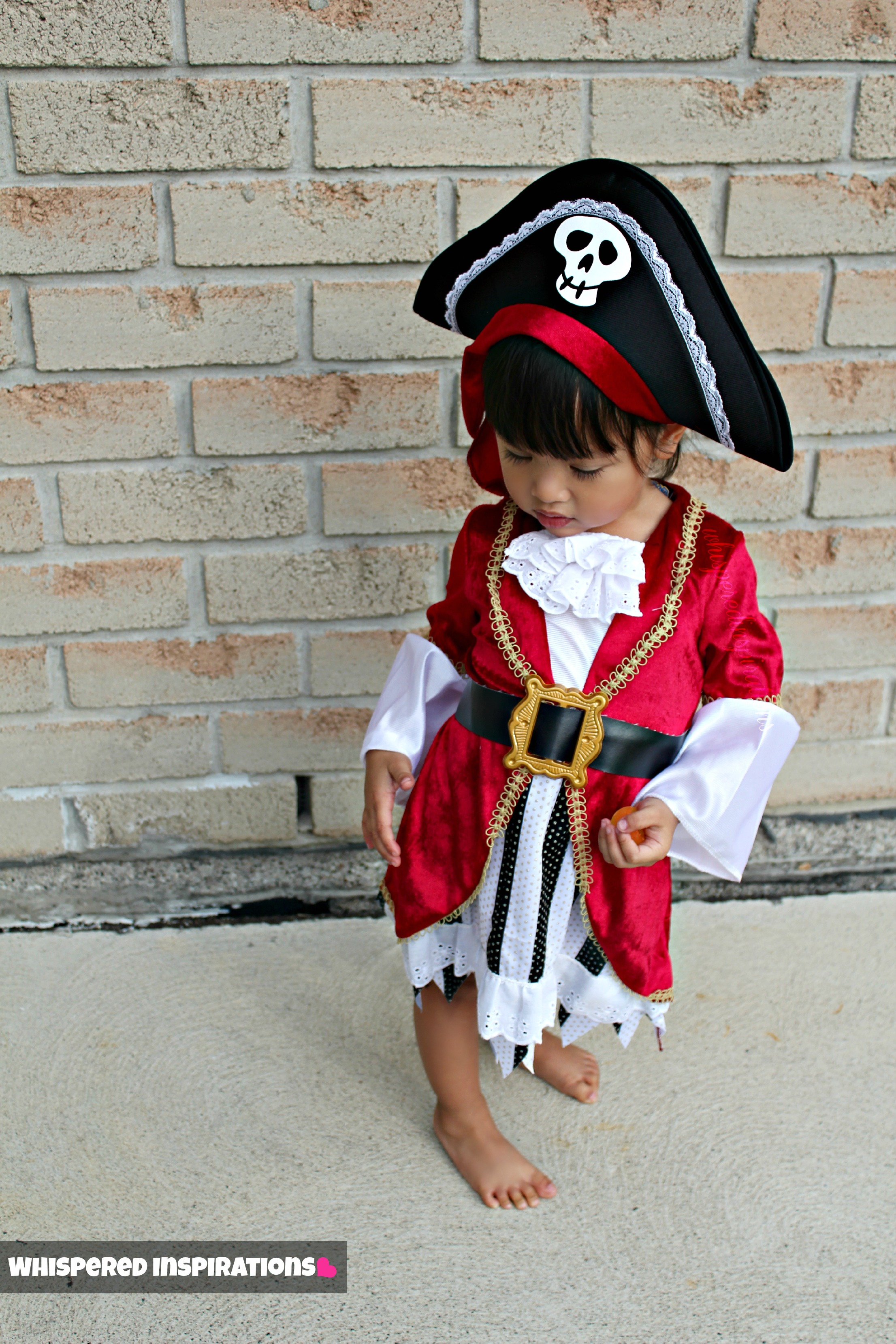 AnytimeCostumes.com: Ahoy Mateys! Check out this Toddler Halloween Pirate Costume!