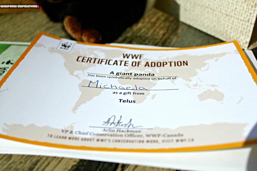 Its Panda Monium With Telus And The World Wildlife Fund