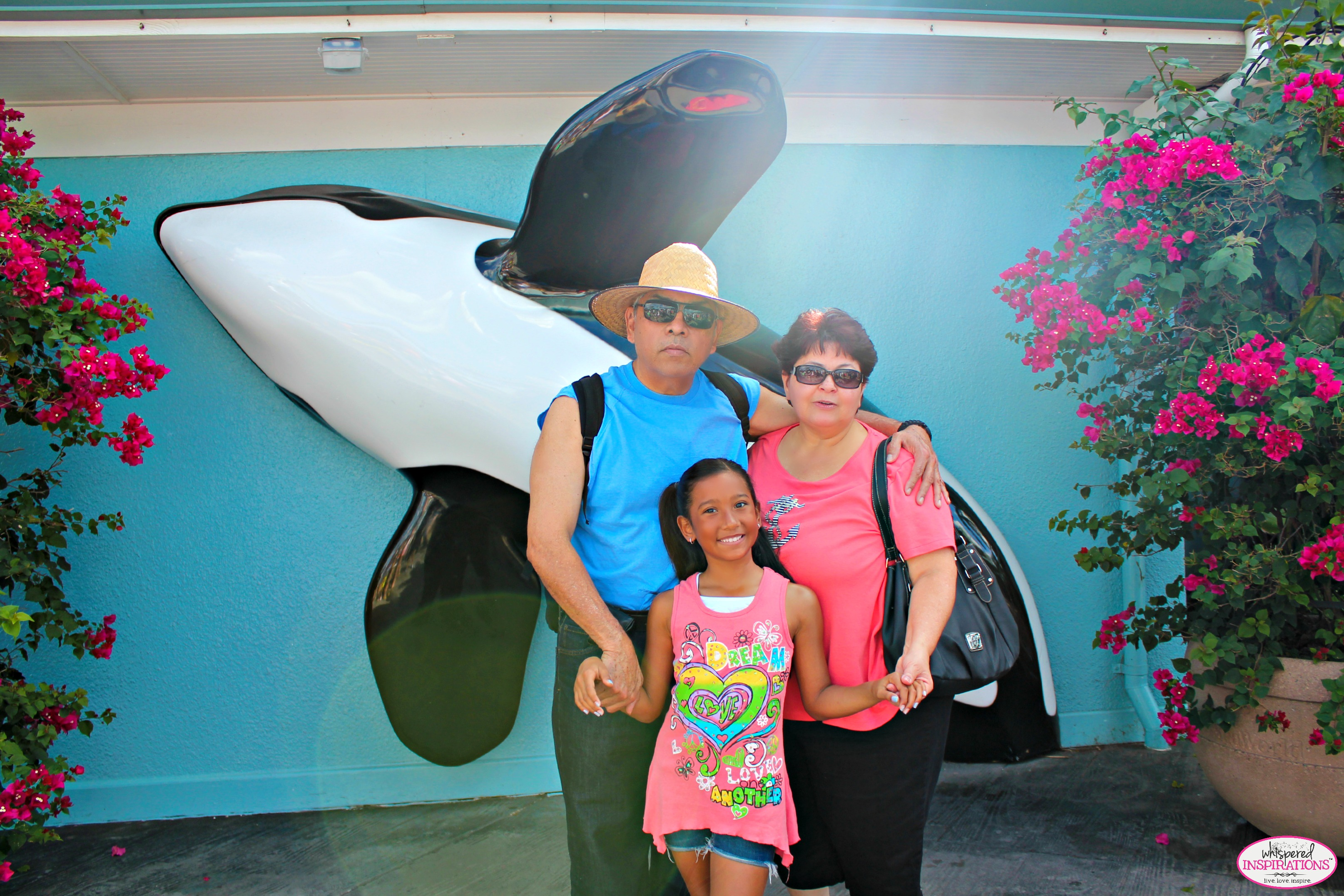Your Ticket to Fun: Try KGStickets.com for All of Your Florida Attractions Tickets! We Enjoyed a Day at SeaWorld Orlando! #kgstickets
