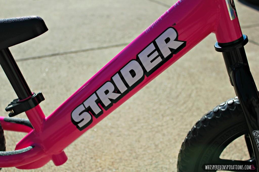 Strider-06