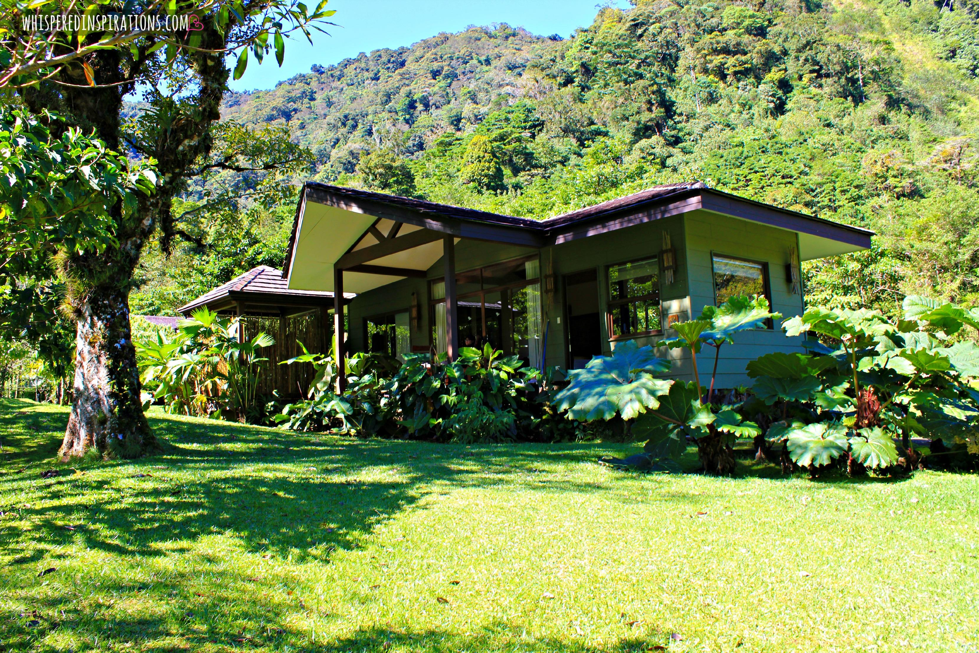 Visiting Costa Rica: A Serene Haven in El Silencio Lodge & Spa in Bajos del Toro. #PuraVida #GiftOfHappiness