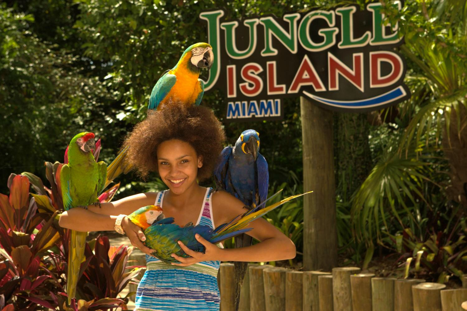 Jungle Island Miami: Interactive Exhibits, Fun Shows and Animals Galore! #travel