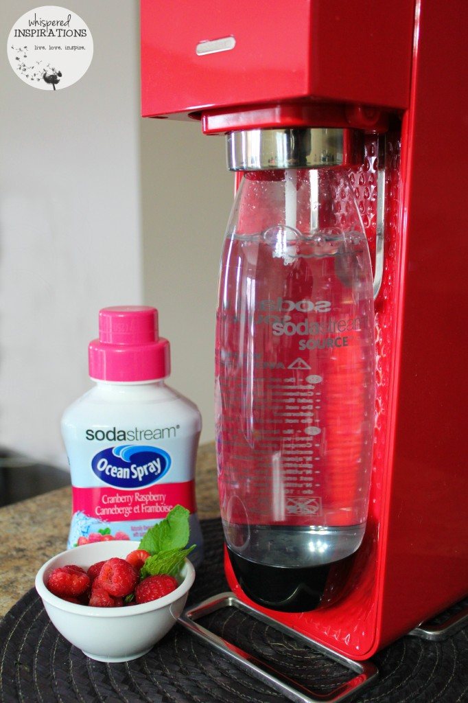 A SodaStream is filled with bubbles and syrup and fresh berries are shown.
