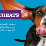 Sponsored: NEW Misfits Dog Treats Are Here! Feed the FUNNY! #pets