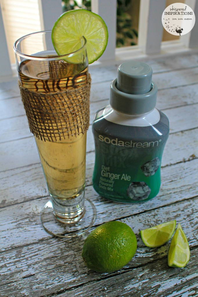 Ginger Ale with lime with the SodaStream syrup.