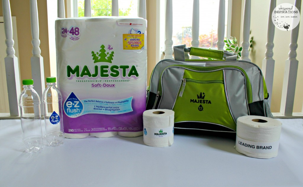 Majesta-EZFlush-01-1