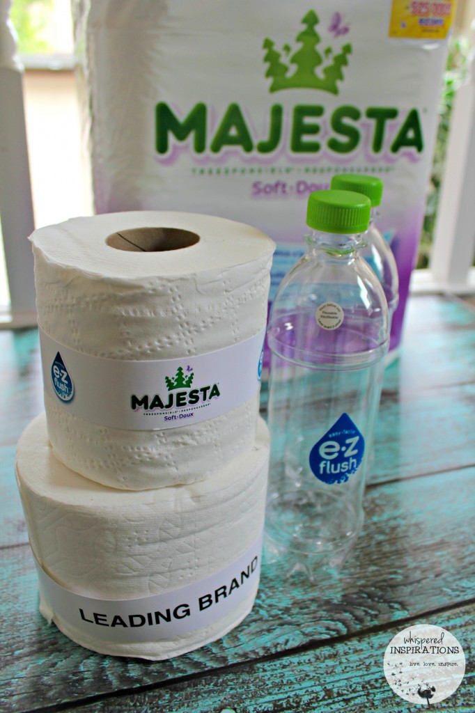 Majesta-EZFlush-02