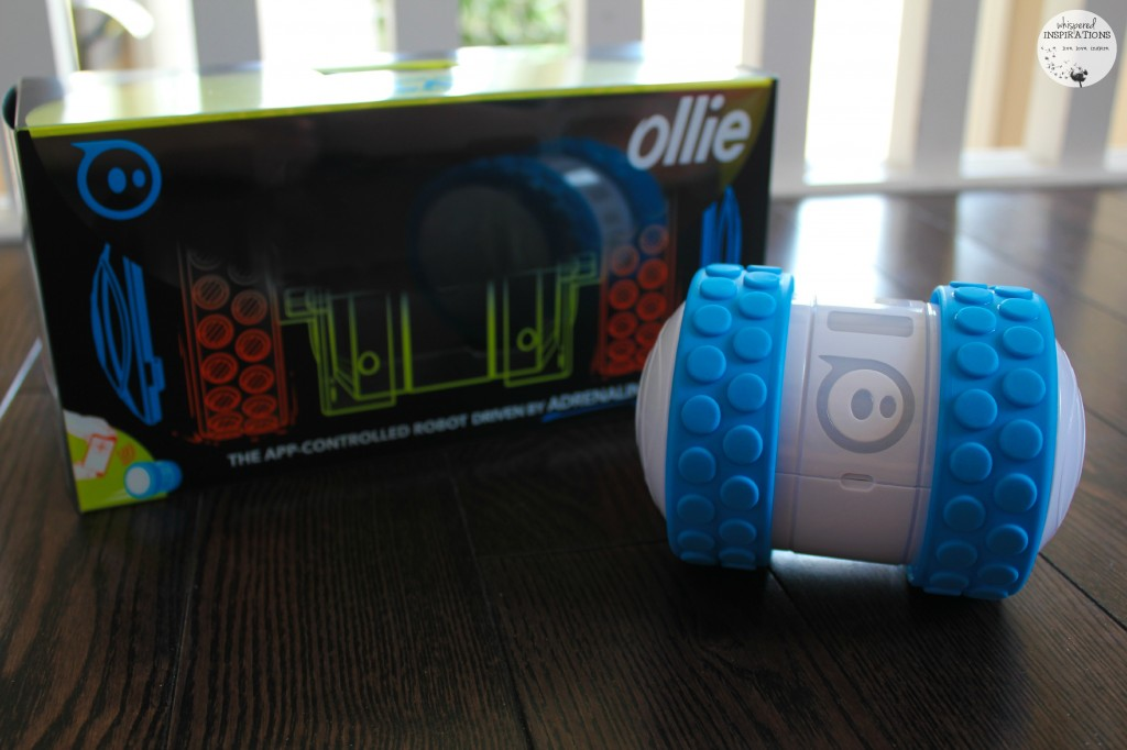 Ollie-01