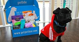 PetBox-February-02