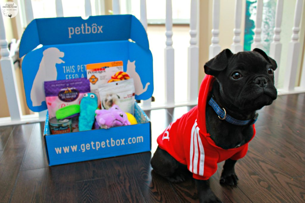 February PetBox: Spoil Your Furbabies in the Month of Love & Year-Round! #PetBox