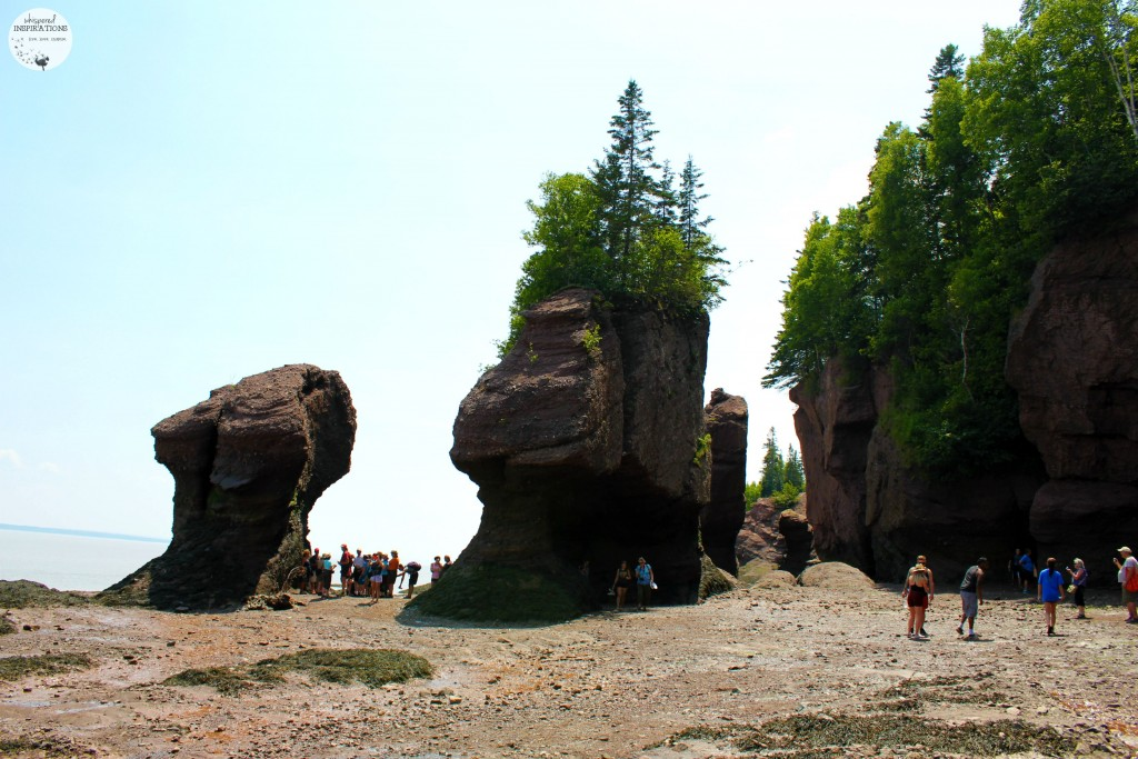 Rock Formations at low tide at Hopewell Rocks, people are exploring the ocean floor.
