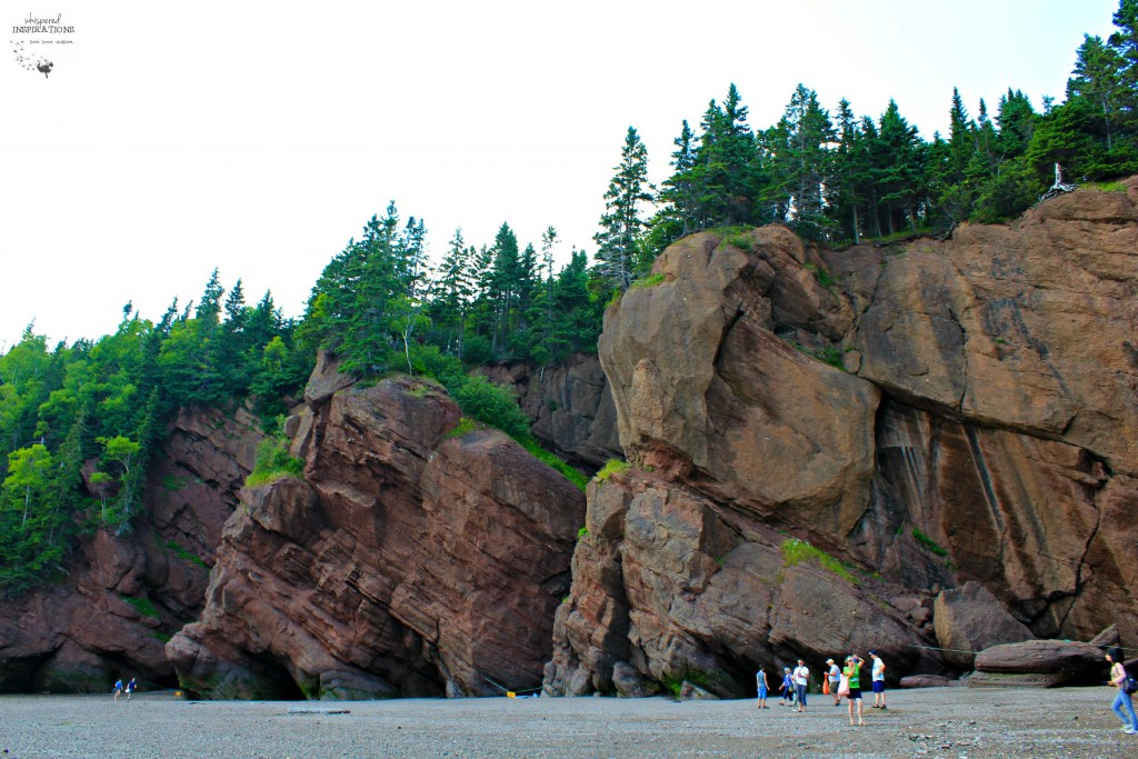 Hopewell-Rocks-11