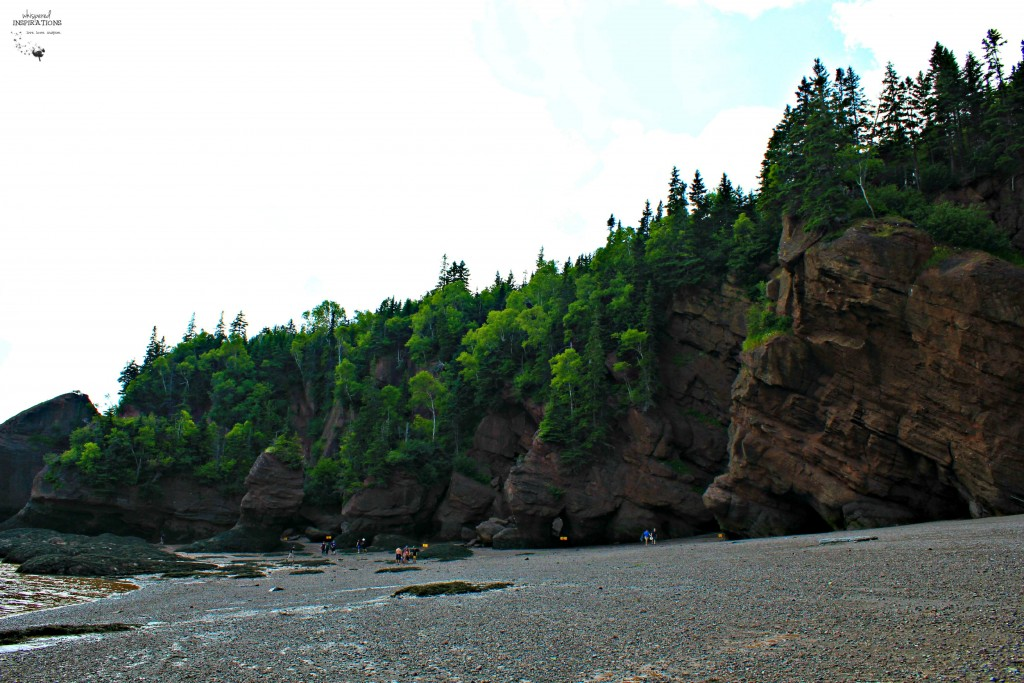 Hopewell-Rocks-14