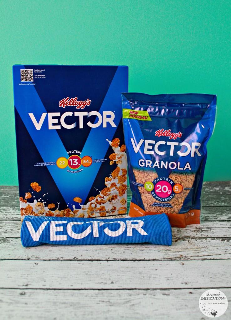 Kelloggs-Vector-01