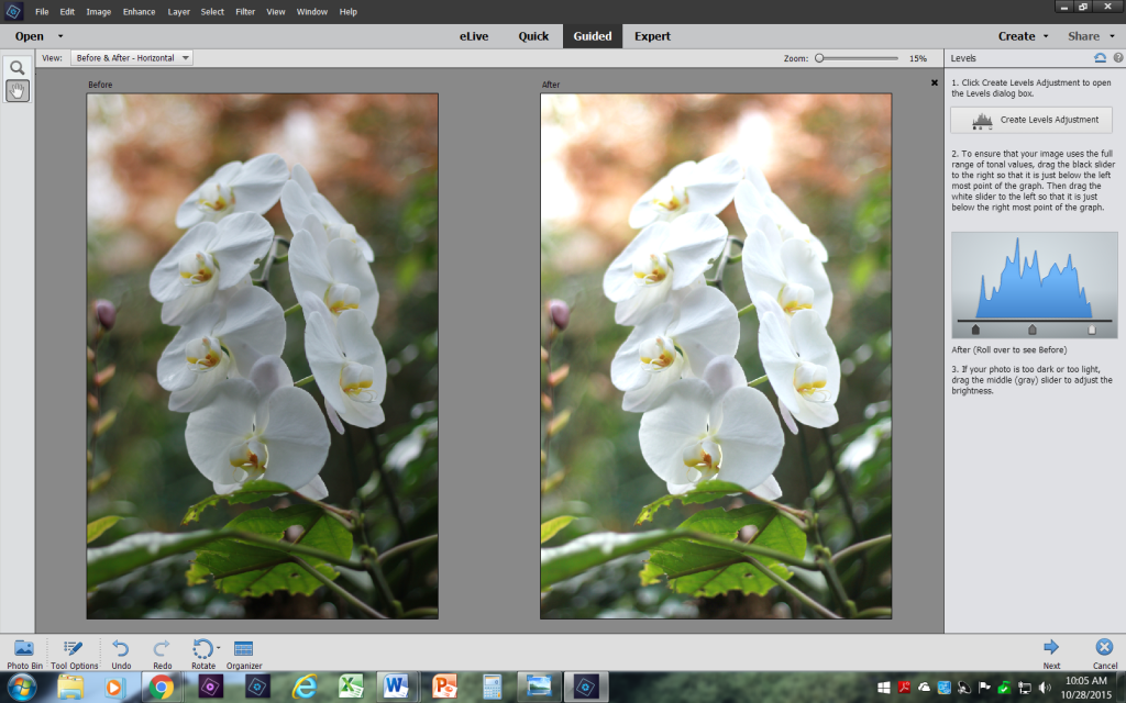 Before and After Photoshop Elements