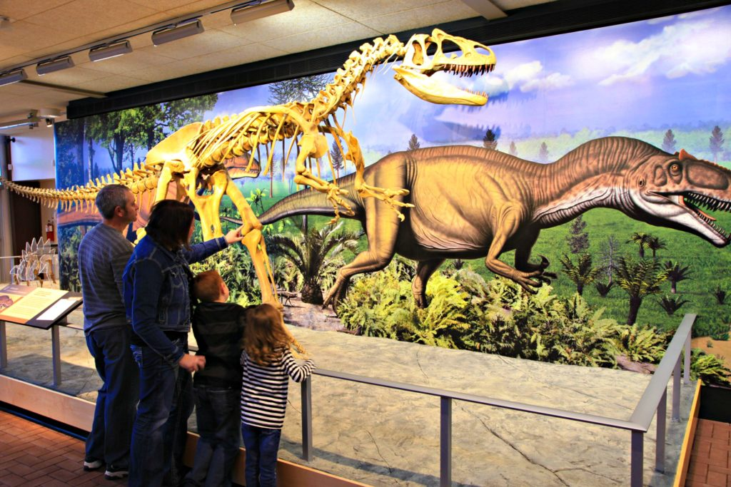 Why You Need to Visit Dinosaurland with Your Family! #travel