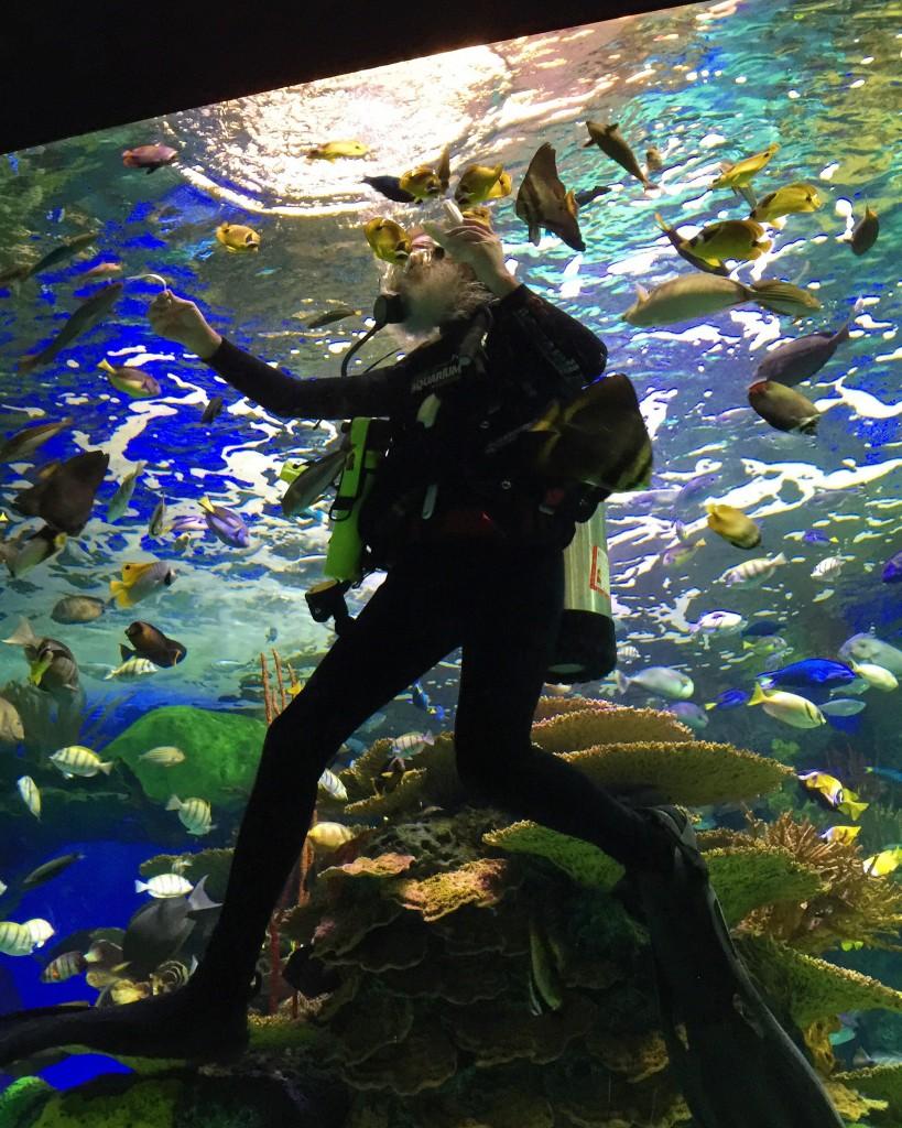 Ripleys-Aquarium-of-Canada-11