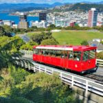 3 Interesting Facts About Wellington You Need to Know! #travel