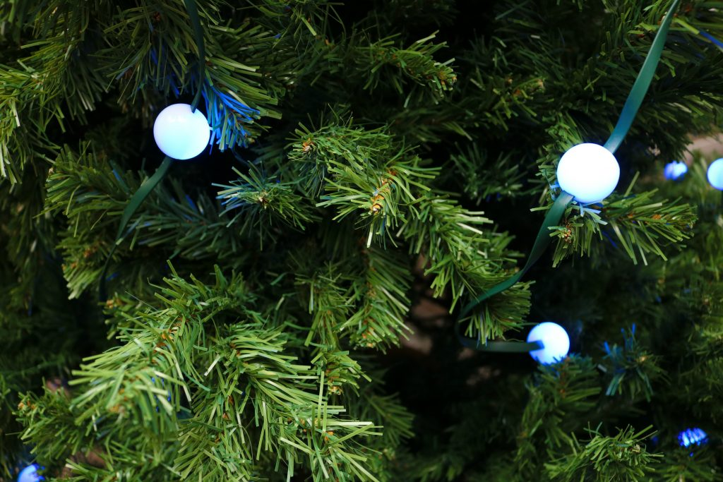 forget tangled christmas lights this year with tree