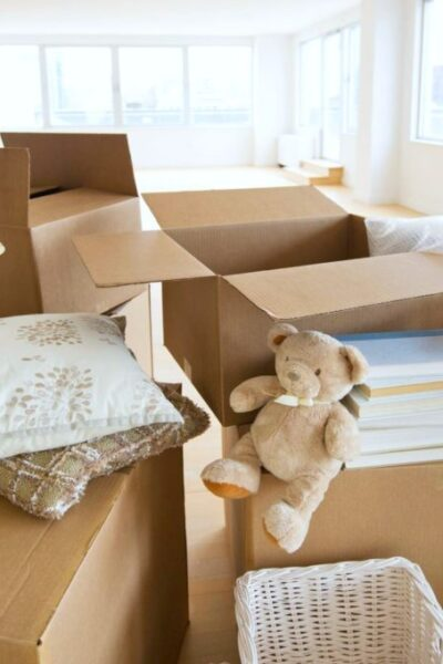 Moving boxes with a teddy bear.