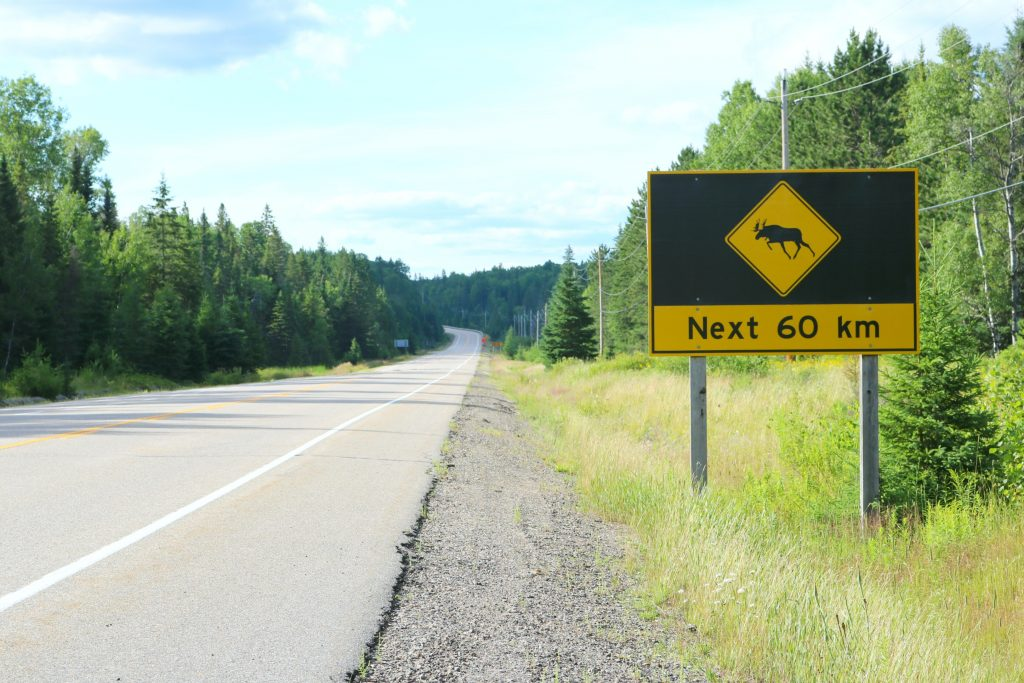 "An empty highway with a moose sign that says, ""Next 60 km""."