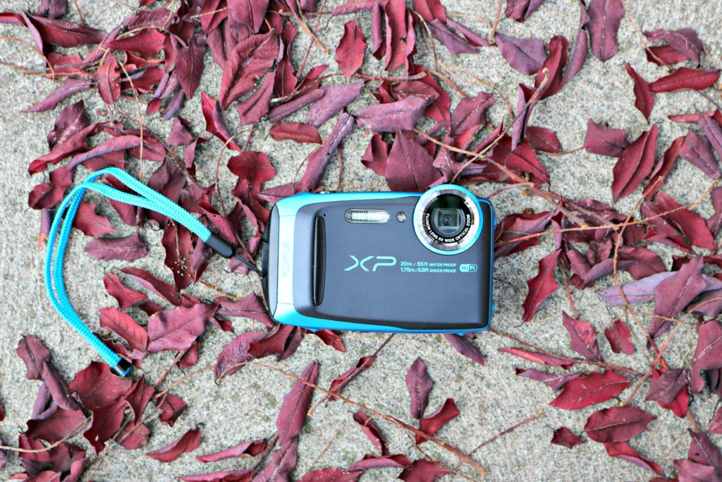 A Fuji XP 120 lies on the ground on a bed of fallen leaves.