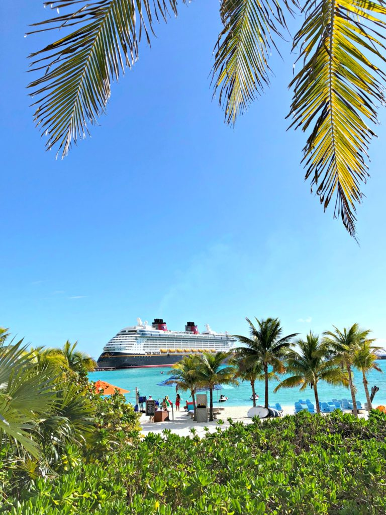 A palm trees frames the Disney Dream at Castaway Cay.
