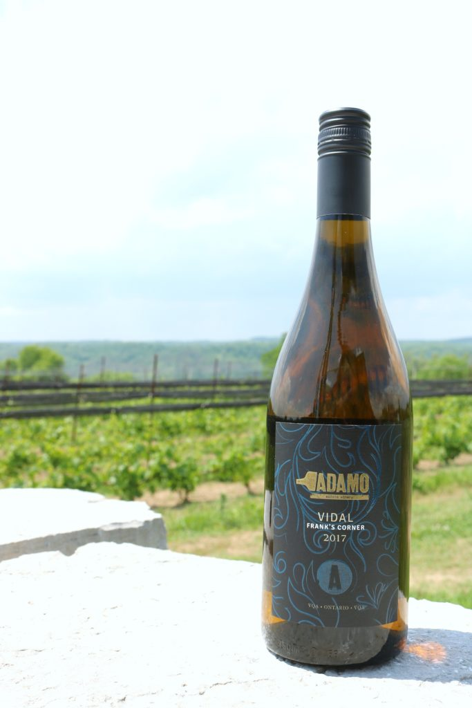 A bottle of Adamo Vidal sits on a flat rock with the Adamo vineyard in the background.