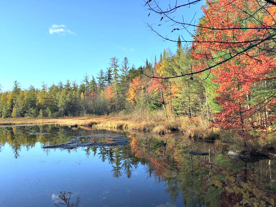 Gorgeous foliage is shown by a lake in yellows, oranges, and reds.