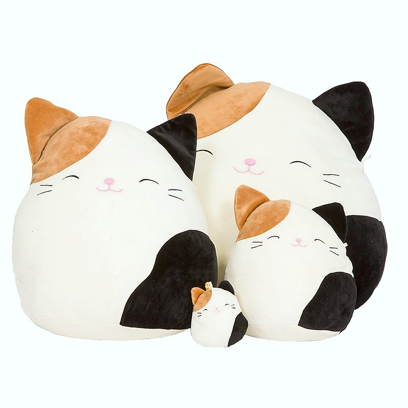 Squishmallows, super soft plushies that are incredibly cuddly. This is a cat.