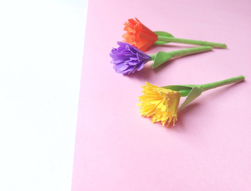 3 beautiful and colourful paper flowers on a white and pink background.