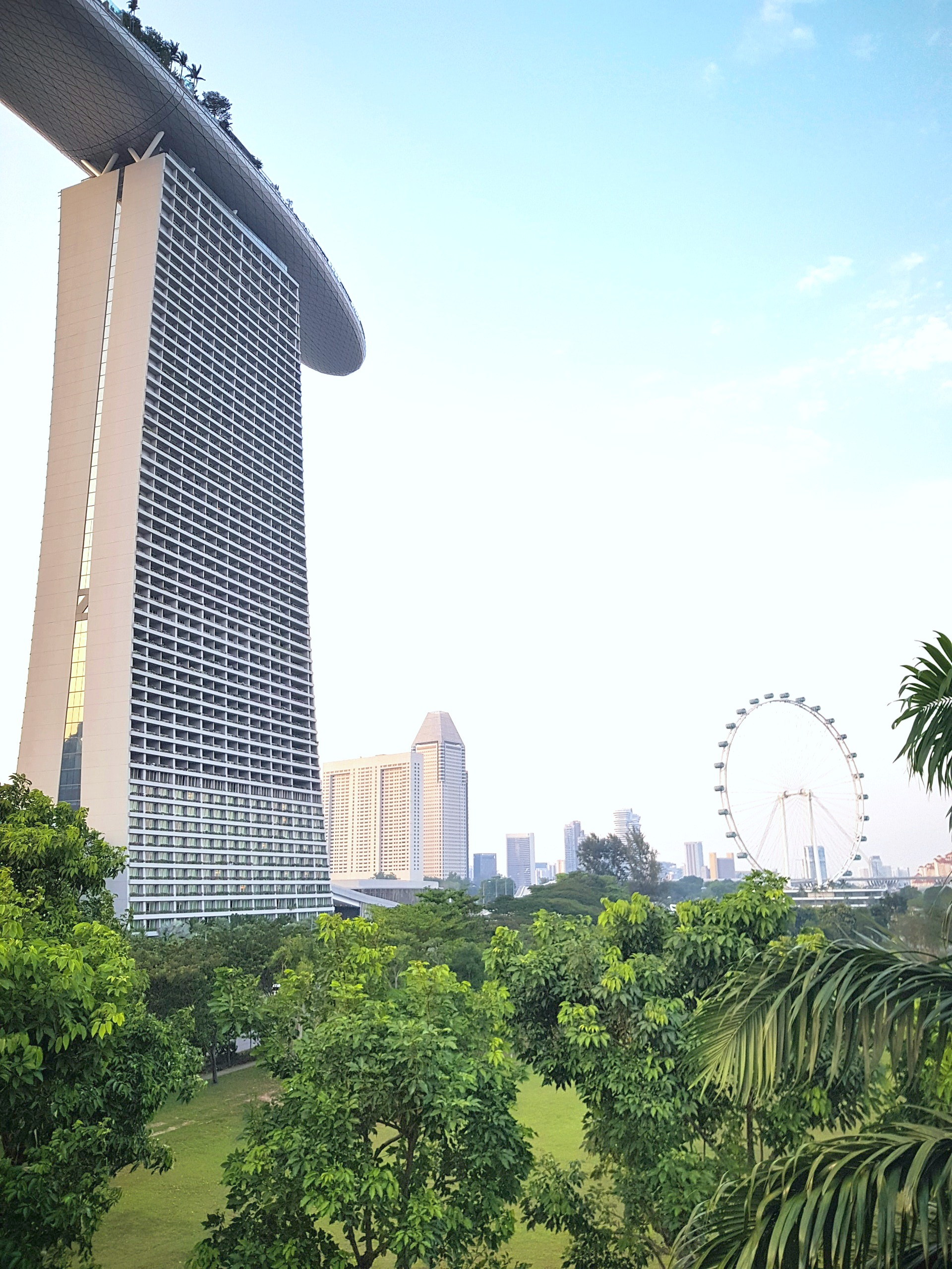 Singapore high-rise building, lush greenery, and a ferris wheel is in the horizon. A beautiful cityscape with green space.