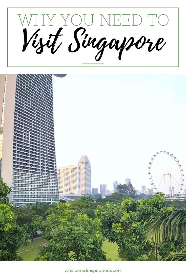 """A banner reads, """"Why You Need to Visit Singapore"""" underneath is a cityscape of Singapore."""