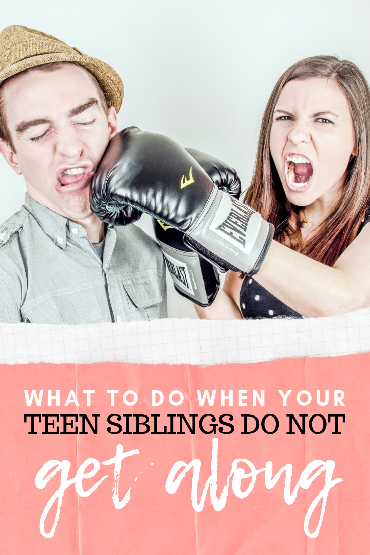 "Two teen siblings fight and one punches the other in the face with a glove. A banner below reads, ""What to do When Teen Siblings Don't Get Along""."