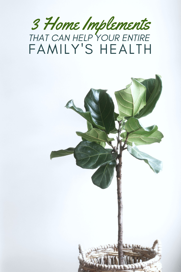 "Text reads, ""3 home implements that can help your entire family's health, a picture behind it of A fern in a basket in front of a white wall."