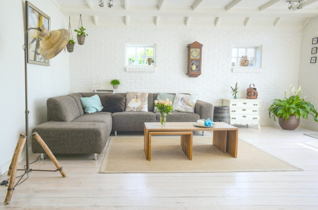A gorgeous open concept home with plants and windows to let in light.