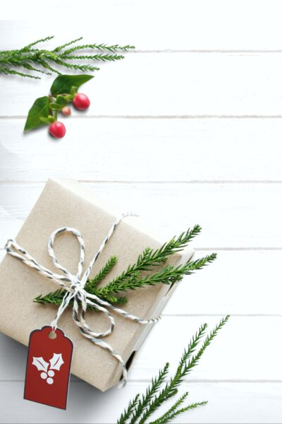 White shiplap background with holly surrounding an eco-wrapped gift with springs of holly as decoration.