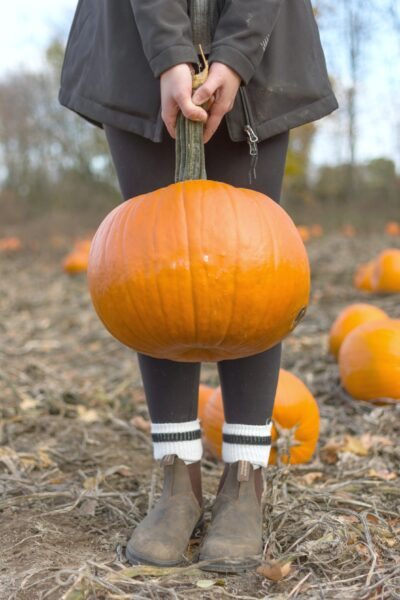 Girl with holiding a pumpkin by the stem. Only lower half is visible.