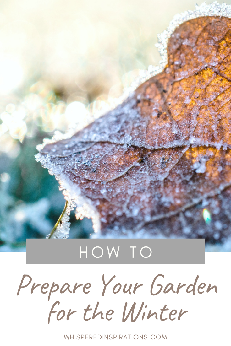 "A browned leaf on the ground, there is frost covering it and the grass surrounding it. A banner reads, ""how to prepare your garden for winter."""