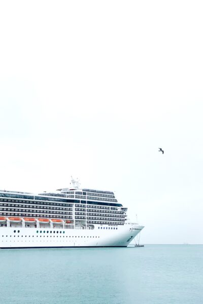 A cruise ship against a white sky, a bird flies high in the sky.