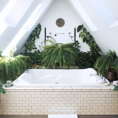 A unique bathroom with a triangular ceiling. Ferns surround a tub.