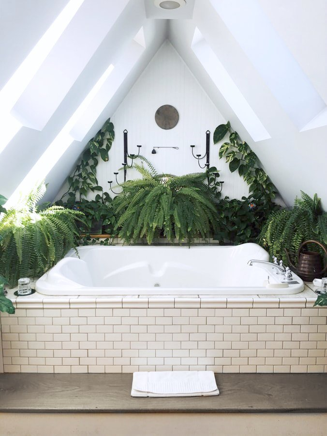 A unique bathroom with a triangular ceiling. Ferns surround a tub.